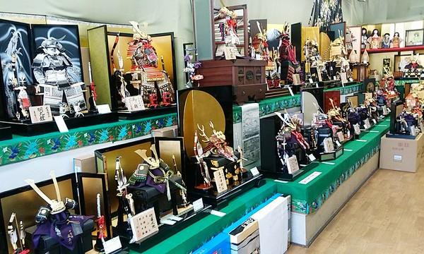 五月人形販売会🍀最終セール開催中‼️5月6日まで✨